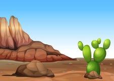 Een woestijn met een cactus Stock Afbeelding