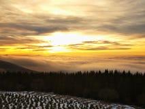 Een wolkeninversie vult de bodem van vallei tussen heuvels. De donkere pieken van bomen maken contrast met gele en oranje wolken o Stock Foto