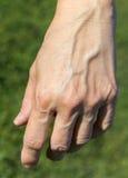Een woman& x27; s linkerhand Royalty-vrije Stock Afbeeldingen