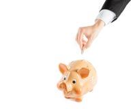 Een zakenmanhand die een muntstuk in een geïsoleerd spaarvarken, concept voor zaken opnemen en bespaart geld Stock Foto