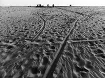 Een zandduin op het lege strand Stock Afbeeldingen