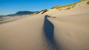 Een zandduin op een strand met het zand die rond door de wind worden geblazen Stock Afbeeldingen