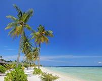 Een zandig strand in het eiland van de Maldiven Stock Afbeeldingen