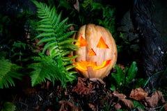 Een zeer vriendelijke en grappige Halloween-pompoen, met een grappige blik en a Stock Foto