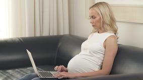 Een zijaanzicht van een vrij zwangere blondezitting op de bank en het gebruiken van laptop Zij bekijkt het scherm en het typen stock videobeelden