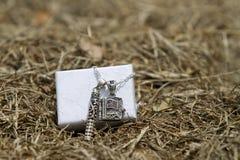 Een zilveren medaillon op een halsband royalty-vrije stock foto