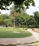 Een zonnige Dag in het Park stock fotografie