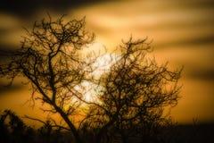 Een zonsondergang van zon en schaduw stock afbeelding