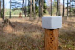 Een zoute die kubus op bosdieren wordt voorbereid Lik in het bos dichtbij royalty-vrije stock foto's