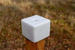 Een zoute die kubus op bosdieren wordt voorbereid Lik in het bos dichtbij stock afbeeldingen
