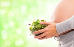Een zwangere vrouw die een verse groene salade houdt Stock Foto