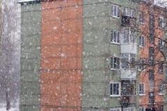 Een zware sneeuwval steekt oud rood basilicum aan, royalty-vrije stock afbeelding