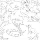 Een zwart-wit overzichtsbeeld van de cobra van wildernisdieren, mongoes, boa, een papegaai, een aap, kameleon stock afbeelding