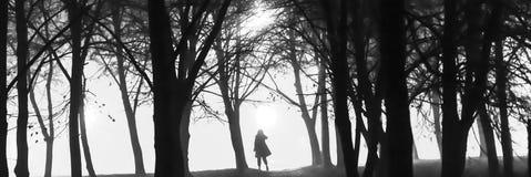 Een zwart-witte foto van een silhoutte van een persoon binnen - tussen de bomen bij nacht Stock Foto's