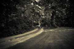 Een Zwart-witte Landweg stock afbeelding