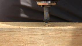 Een zwarte schroef die in een houten plank met een boor - sideview wordt geschroeft stock video
