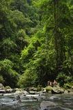 Een zwemmend gat langs de Rivier van La Fortuna biedt een het koelen respijt aan toeristen aan stock foto's