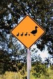 Eend die de Verkeersteken van de Waarschuwing kruist Stock Foto
