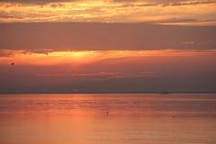 eend die op de achtergrond van zonsopgang opstijgen Royalty-vrije Stock Afbeelding