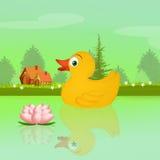 Eend in het meer in de lente Royalty-vrije Stock Afbeeldingen