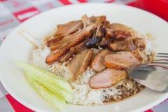 Eend met rijst Royalty-vrije Stock Afbeelding