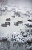 Eenden bij de wintermeer royalty-vrije stock afbeelding