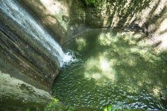Eenden en Waterval Stock Afbeeldingen