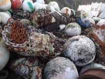 Eendenmosselen door de Kust Stock Foto