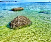 Eendenmosselrotsen in duidelijk water Stock Fotografie