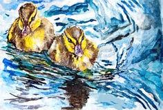Eendjes op het water Het schilderen van natte waterverf op papier Naïef art Tekeningswaterverf op papier stock illustratie
