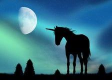 Eenhoorn en Noordelijke Lichten vector illustratie