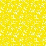 Eenvoud kruidenachtergrond Naadloos patroon met kruiden en pl Royalty-vrije Stock Afbeelding