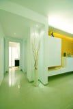 Eenvoudig en schoon huis Stock Foto's