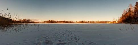 eenvoudig plattelandslandschap in Letland met gebieden en bomen und stock foto