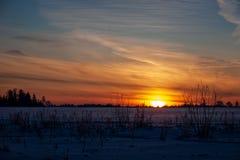 eenvoudig plattelandslandschap in Letland met gebieden en bomen und royalty-vrije stock foto