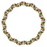 Eenvoudig rond kleurrijk bloemenkader, kroon royalty-vrije illustratie