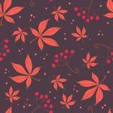 Eenvoudig rood bladeren en bessenpatroon Stock Afbeelding