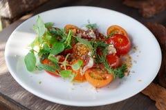 Eenvoudig voorgerecht met tomaten en eendvlees stock foto's
