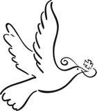 Eenvoudige duif Royalty-vrije Stock Fotografie
