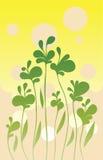 Eenvoudige groene achtergrond Stock Afbeelding