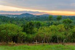 Eenvoudige houten kruisen en graven voor weelderige wildernis en dramatische zonsondergang in de Kongo stock fotografie
