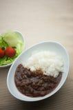 Eenvoudige Japanse kerrie Stock Fotografie