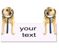 Eenvoudige tekst Stock Afbeeldingen