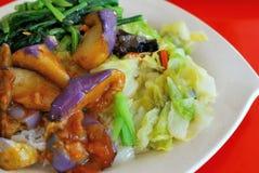Eenvoudige vegetarische vastgestelde maaltijd Royalty-vrije Stock Fotografie