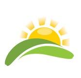 Eenvoudige zon op gras Royalty-vrije Stock Foto's