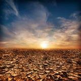 Eenzaam droogte gebarsten woestijnlandschap royalty-vrije stock foto's