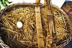Eenzaam ei in een mand van een landbouwbedrijf stock fotografie