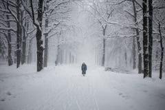 Eenzaam figuur in de sneeuw Royalty-vrije Stock Foto's