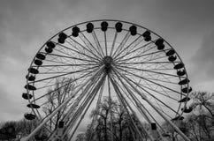 Eenzaam Groot wiel Stock Fotografie