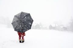 Eenzaam in het de wintersprookjesland Royalty-vrije Stock Foto's